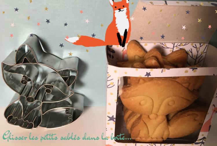 sables-renards-dans-la-boite