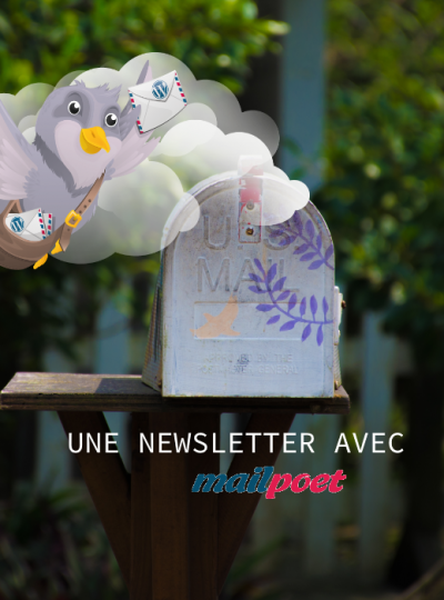 Newsletter : je teste l'extension «MailPoet»