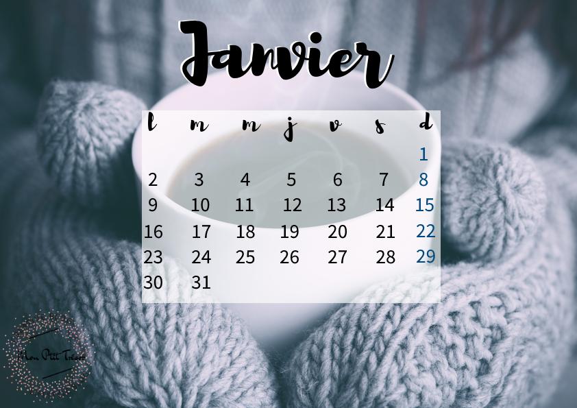 calendrier-janvier-tresor-2017