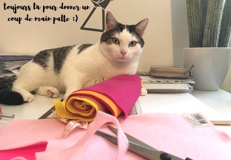 suki aide precieuse frida gato