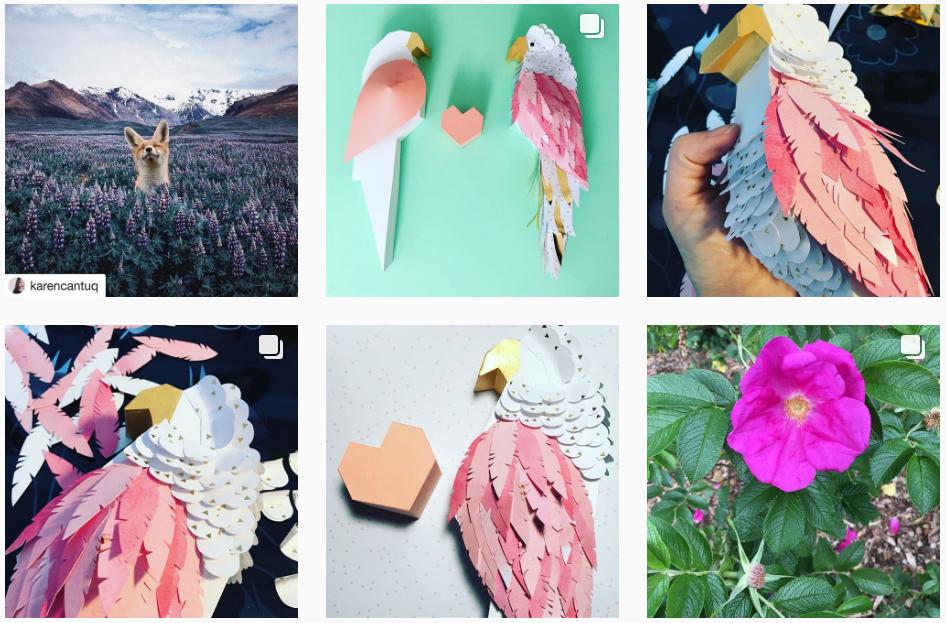 instagram adeline juliette perroquet
