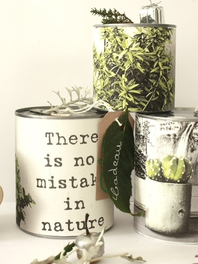 Challenge paquets cadeaux nature, mes chouchous ♥